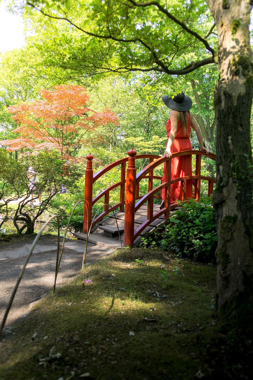 Japanese Garden The Hague - the Netherlands