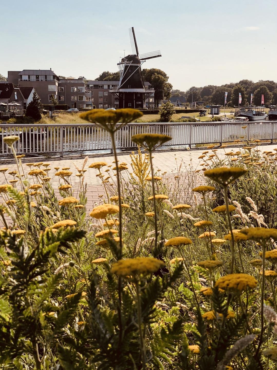 Ommen in Overijssel - the Netherlands