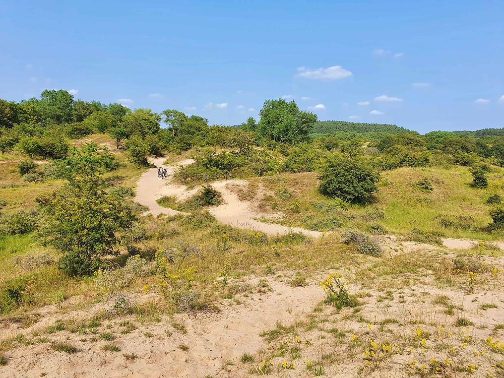 Cycling in National Park Zuid-Kennermerland-Velsen-Netherlands