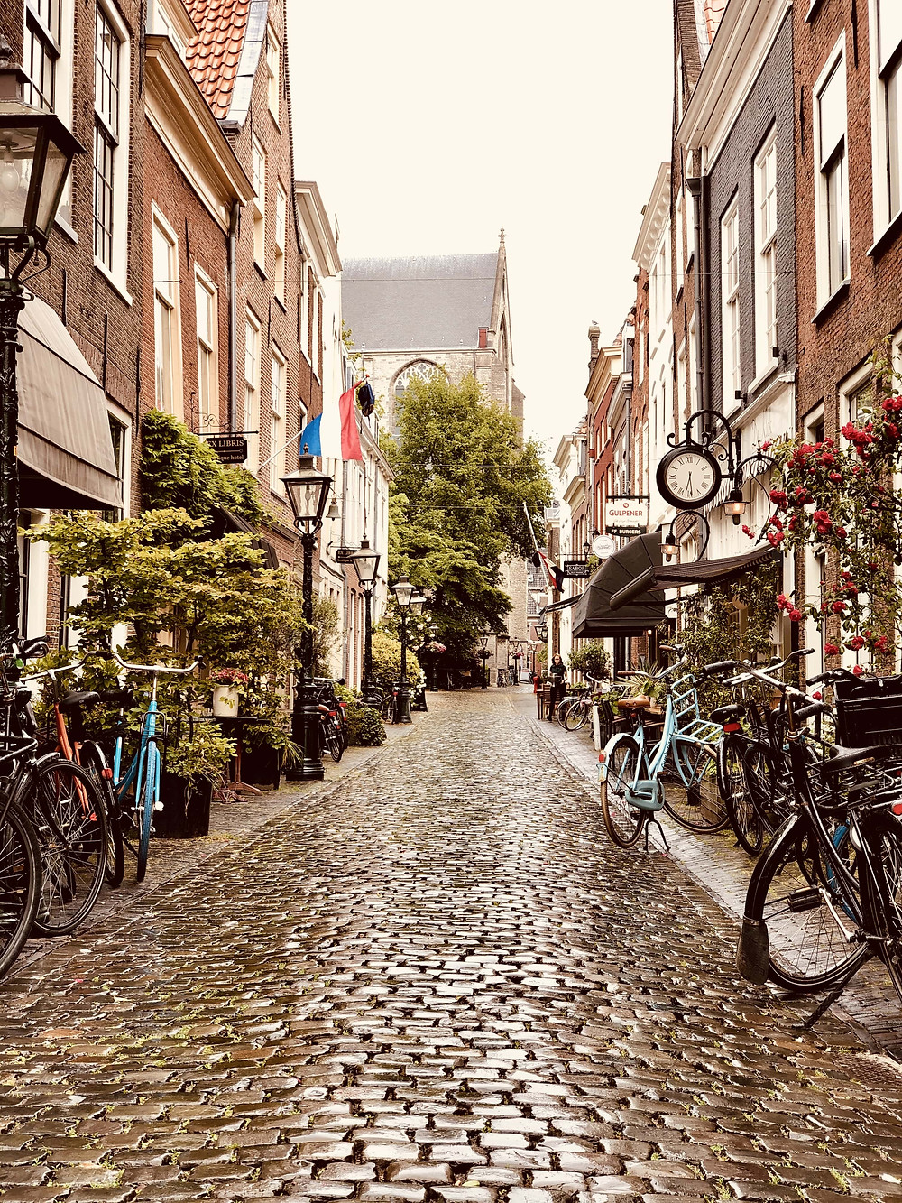 Cobble-stoned streets of Leiden Netherlands citytrip