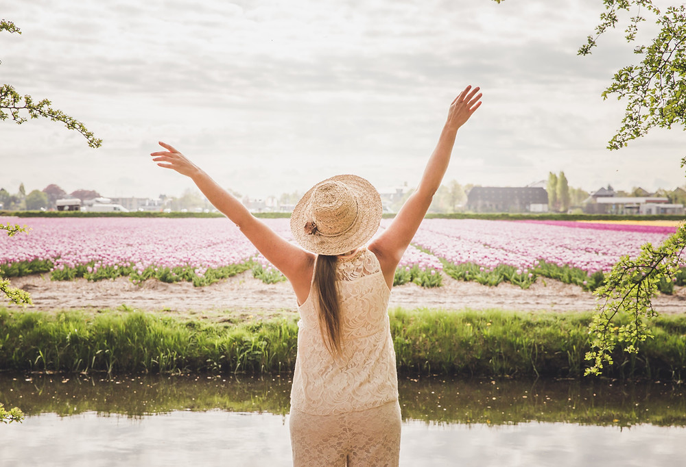 Flowerfields Lisse, the Netherlands