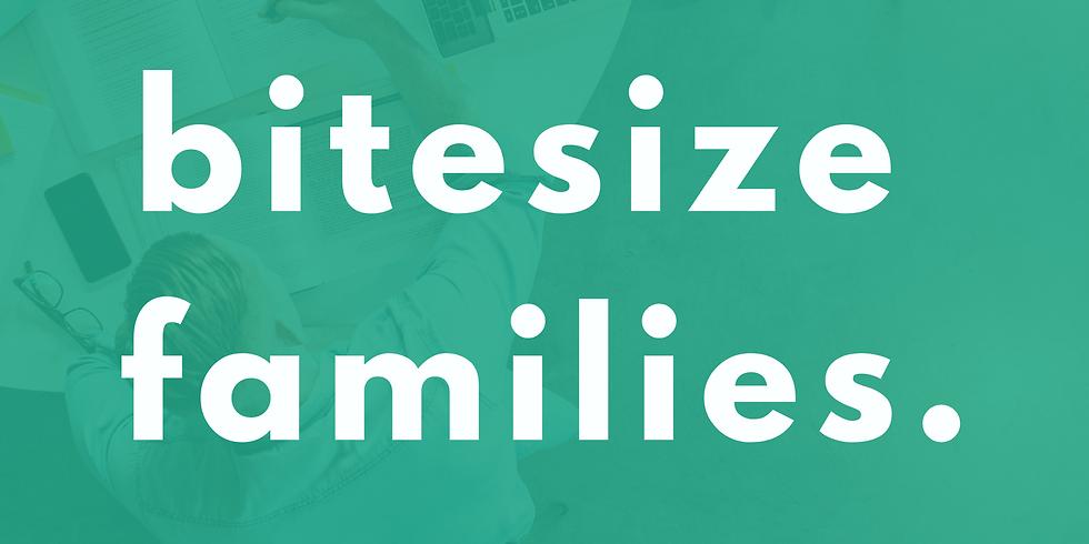 Bitesize Families (Sunday 19th)