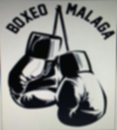 boxeo malaga