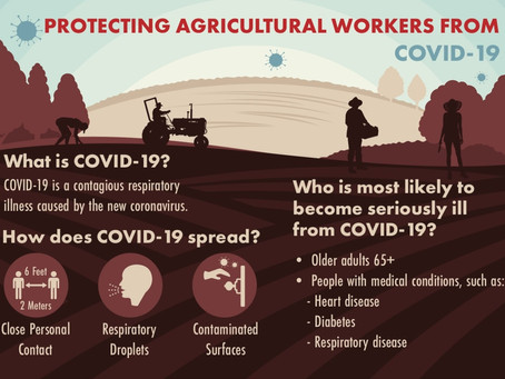 Protecting Agricultural Workers From COVID-19