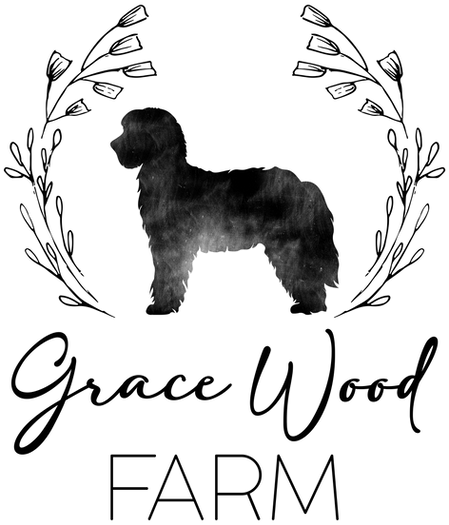 Grace Wood Farm - Sheepadoodle Puppies