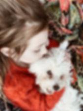 Poochon Bichpoo Puppies - Grace Wood Farm