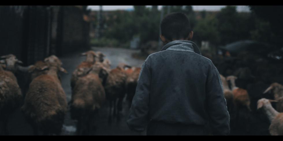 N'Olacak ? / What'll Happen? (15') Yapım Yılı: 2020 Yönetmen: Merve Tulay Film Türü: Belgesel (1)