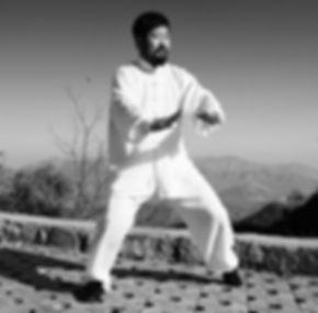 Chen Zhonghua on Daqingshan 2.jpg