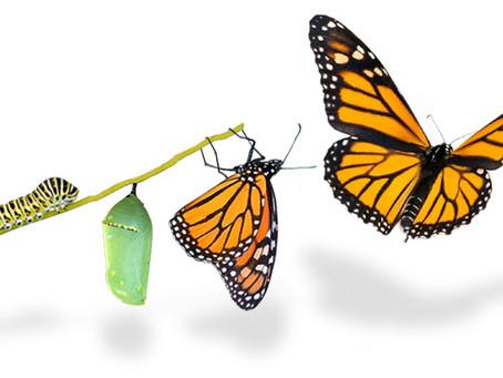SHIFT HAPPENS - New Era Of Transformation