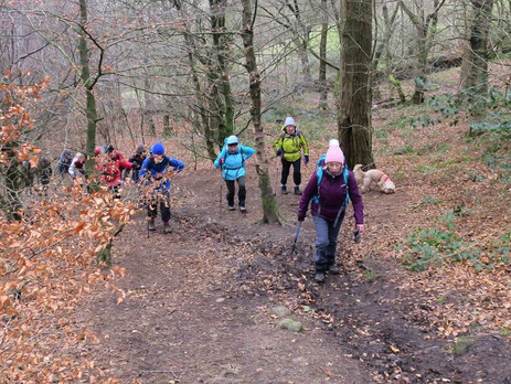 WITTON COUNTRY PARK, Sat 1st Feb 2019