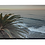 Thumbnail: Sunset Palm Tree - Wooden Canvas Print