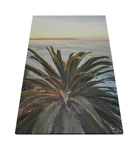 Sunset Palm Tree - Wooden Canvas Print
