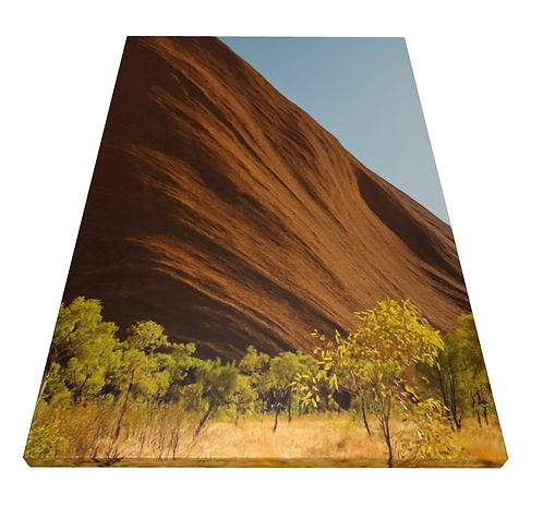 The Outback - Wooden Canvas Print