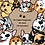 Thumbnail: Kit Doguinhos