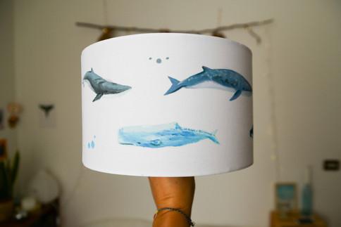 Whale lamp II