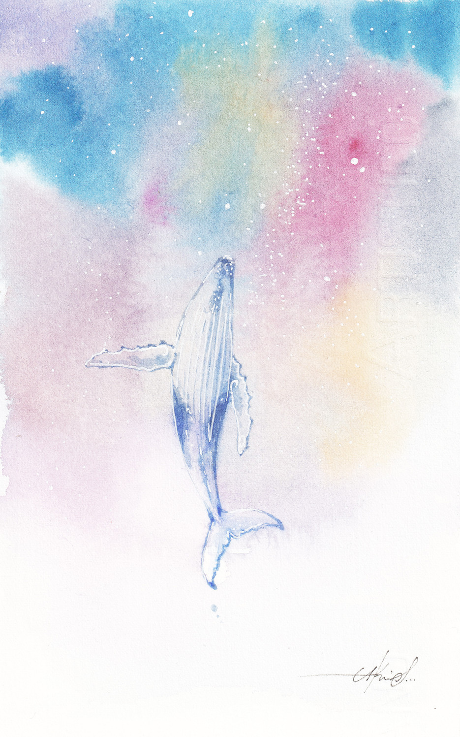 Whale in Universe