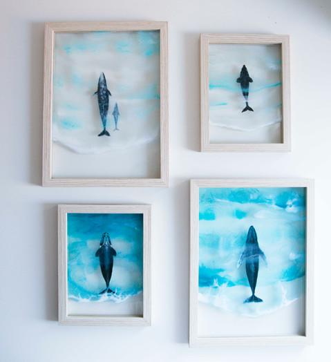 Glass_whales-16.jpg