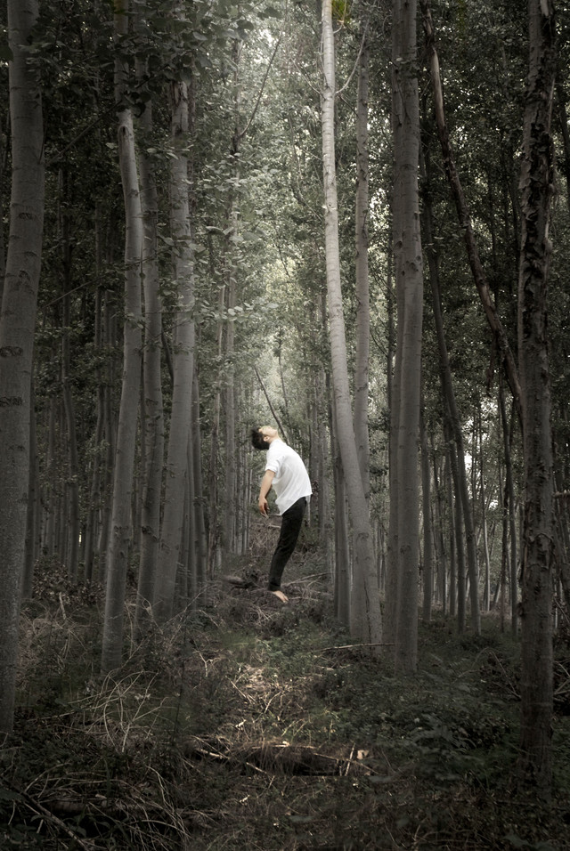 Abduction in the forest