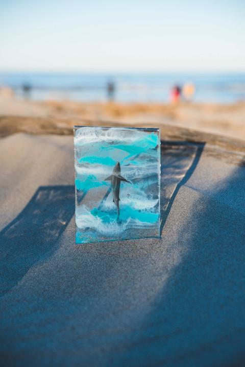 Resin_Whales_Beach-16.jpg