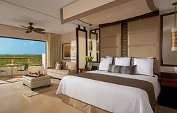 Jr. Suite Tropical View