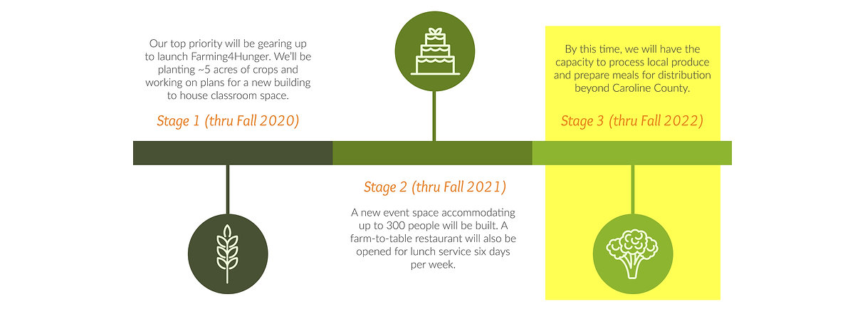 Timeline - Nutrition Services - ng.jpg