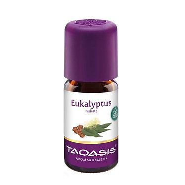 EUCALIPTUS RADIATA  Orgánico 30ml / Eukalyptus radiata BIO