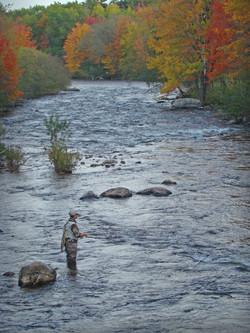 SFD @ GLS, Maine in fall.JPG