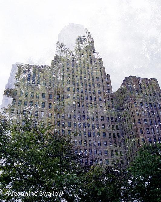City Hall in Trees, Buffalo, NY