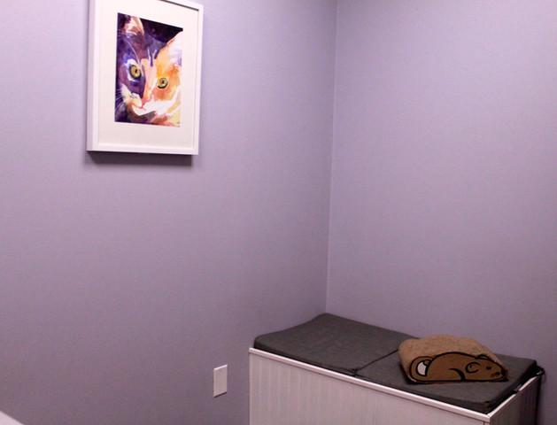 The Cat Room