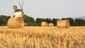 Schließung der Mühle in Jarmen