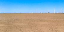 Drittes Dürrejahr in Folge: Klimaschutz vorantreiben und Wirtschaften umstellen