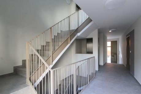 ha-georgsgasse-eingang-treppe-eg.jpg
