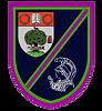 logo-276x300.png
