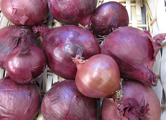 Oignon rouge - 1 kg