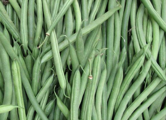 Haricots verts - 500g