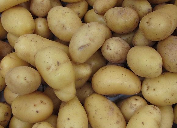 Pommes de terre Amandine - 1kg