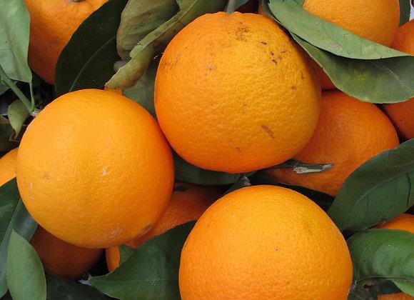 Oranges à feuilles - 1kg