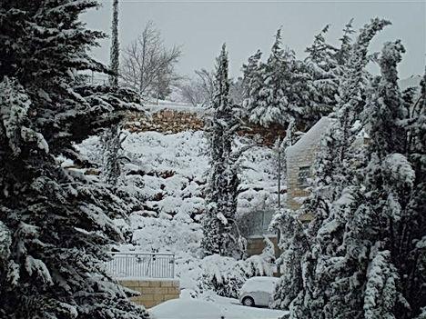 snow in Jerusalem.jpg