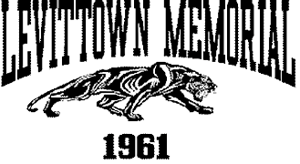 LMHS logo home page.png