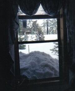 Kathy's 2nd floor window