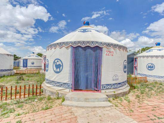 buy yurt