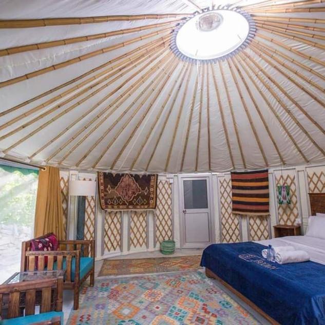 mongolian yurt.jpg