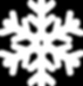 001-snowflake3.png