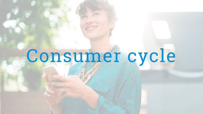Consumer cycle