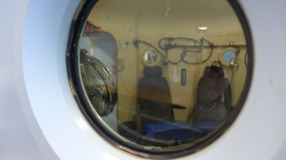 Chamber window