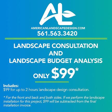 ALD_Consultation_$99.jpg