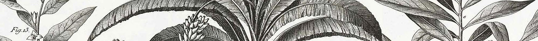 Palm-Interiors_Interior-Designers-Brisba