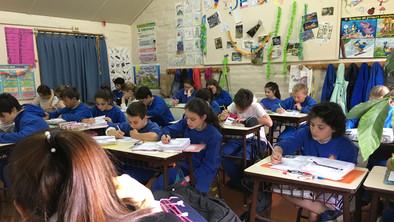 Formacion-Academica-primaria-w.jpg