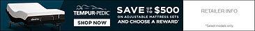TP Save $500 President's Day Banner.jpg