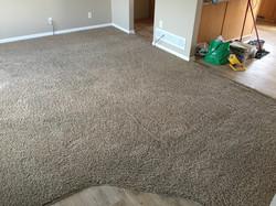 Waukee Carpet Cleaning